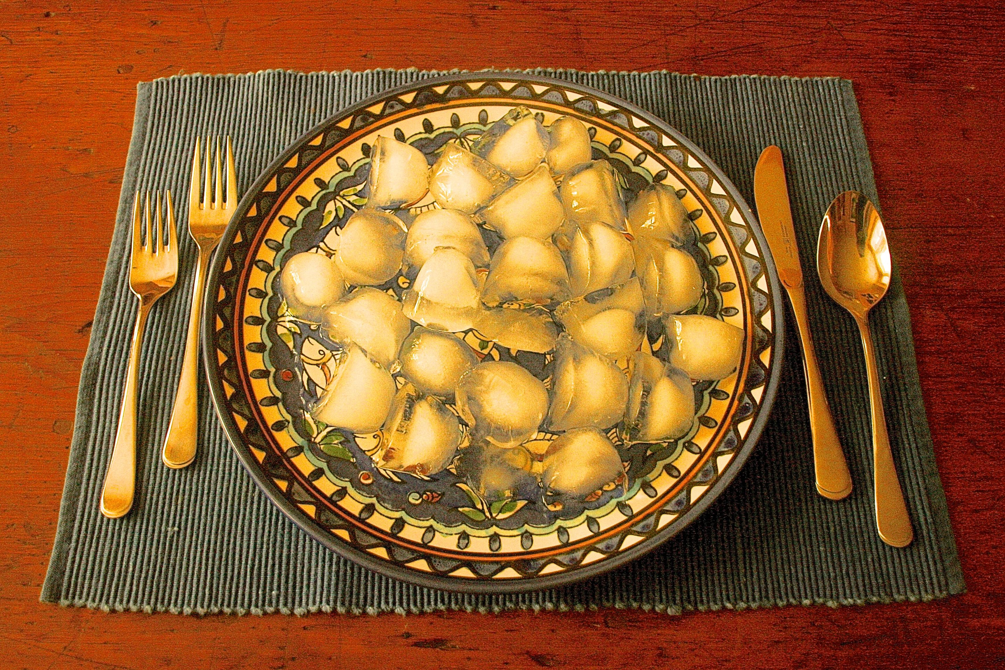 Dinner Plate full of ice cubes: A perfect vegan, gluten-free, soy-free, antibiotics-free, raw, non-GMO, organic, fat-free, low-carb meal!